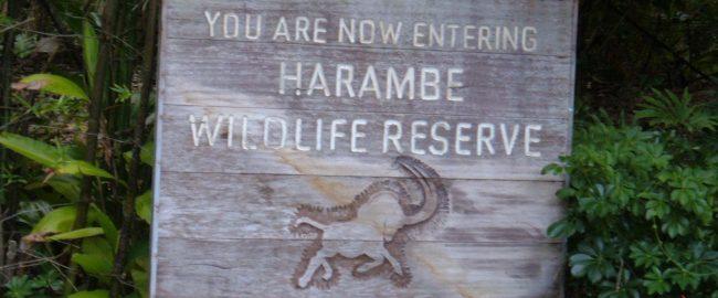 Sign seen at the entrance of Kilimanjaro Safaris. Photo by BrokenSphere [CC BY-SA 3.0], via Wikimedia Commons