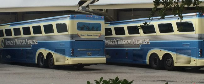 Disney's Magical Express buses. Photo by brownpau [CC BY 2.0] via Wikimedia Commons.