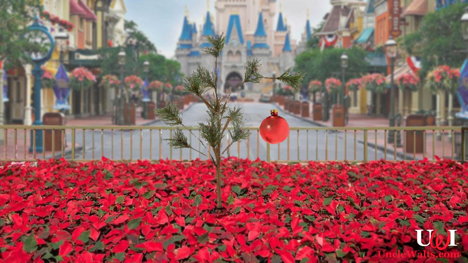 Magic Kingdom Christmas Tree Planted