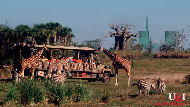 Disney's Kilimanjaro Safari on a clear day. Reportedly a nuclear power plant is visible from this ride somewhere.