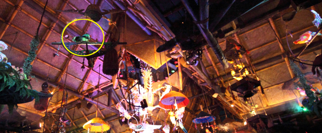 Dead parrot tribute at the Enchanted Tiki Room. Photo by Sam Howzit [CC BY 2.0] via Flickr.