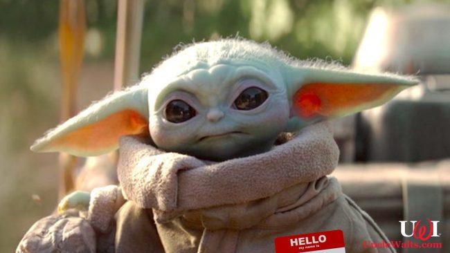 His name is Bob, isn't it? We bet his name is Bob. Photo © 2019 Disney.