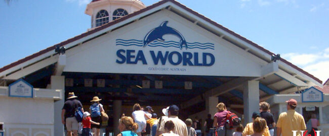 This proves that SeaWorld is now in Texas. Photo by Tristanb [CC BY-SA-3.0] via Wikimedia.